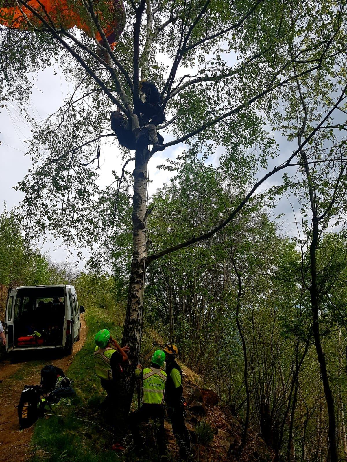 parapendista parapendio albero 1-2
