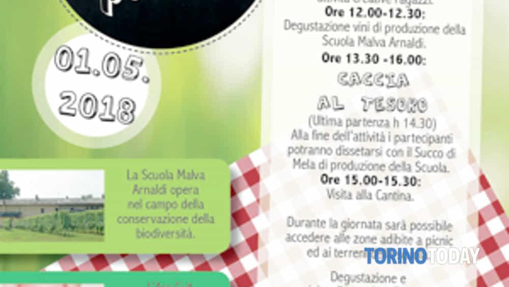 wine & picnic + caccia al tesoro-2