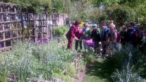 calici in giardino- orto botanico borgo medievale-2