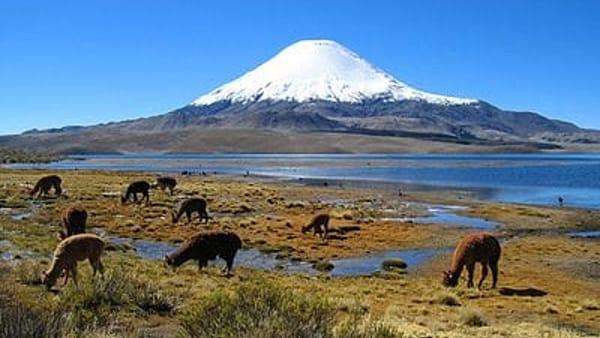 Viaggiare in Cile attraverso il design, incontro per i viaggiatori da Qubi