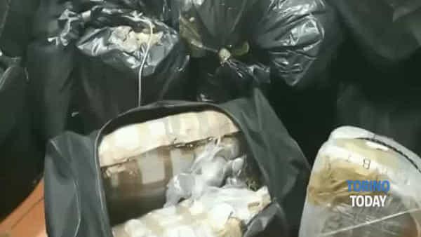 Da Pesaro a Torino: la droga veniva trasferita con un'auto a noleggio, 500 kg sequestrati