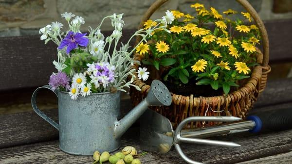 Fiera di Maggio e Florarte a Cuorgnè