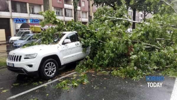 Degrado urbano a Torino in Corso Vigevano, 20a   bomba d'acqua caduto albero su auto mentre transitava-2