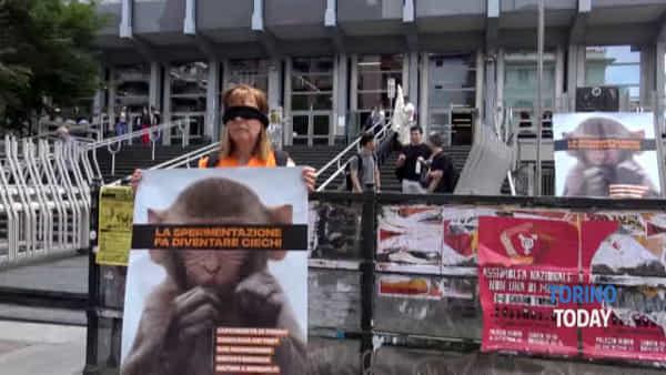 """Animalisti in presidio contro l'Università: """"Non accecate i macachi"""""""