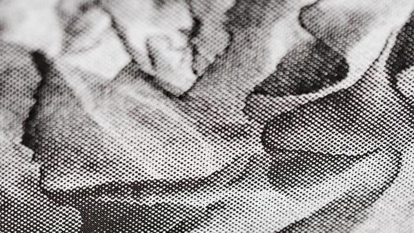 """""""Biomega Multiverso"""" di Cosimo Veneziano in Project Room a Camera"""