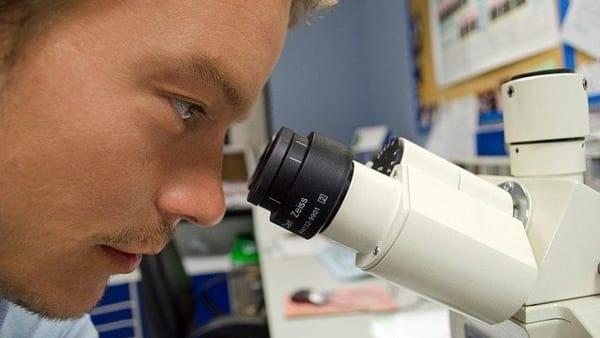 Pharma & Science, le skill su cui puntare