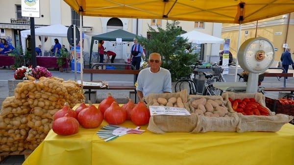 Sagra della patata a Villastellone