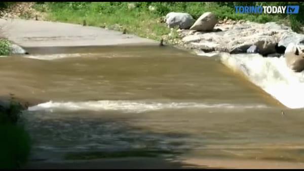 Dopo le piogge arriva la piena dei corsi d'acqua: il Po è esondato in città