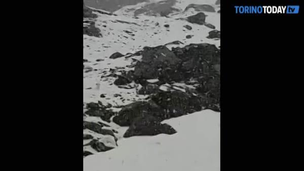 Intensa nevicata sulle montagne, il rifugio è immerso nella neve