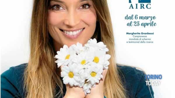 Margherita per Airc, un fiore per la ricerca a Torino