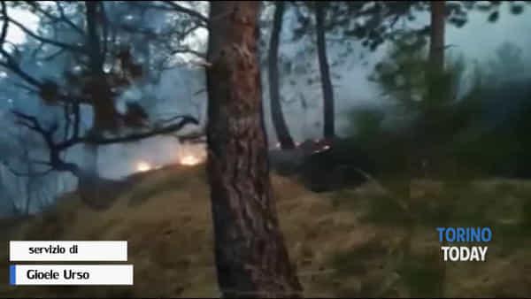 Boschi ancora a fuoco, l'incendio si è propagato velocemente: le immagini video