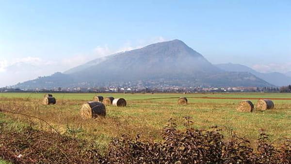Alla scoperta della primavera nel Parco naturale del monte San Giorgio