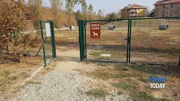 Brandizzo area cani Peppino Impastato legni con chiodi feb 2018 2-2