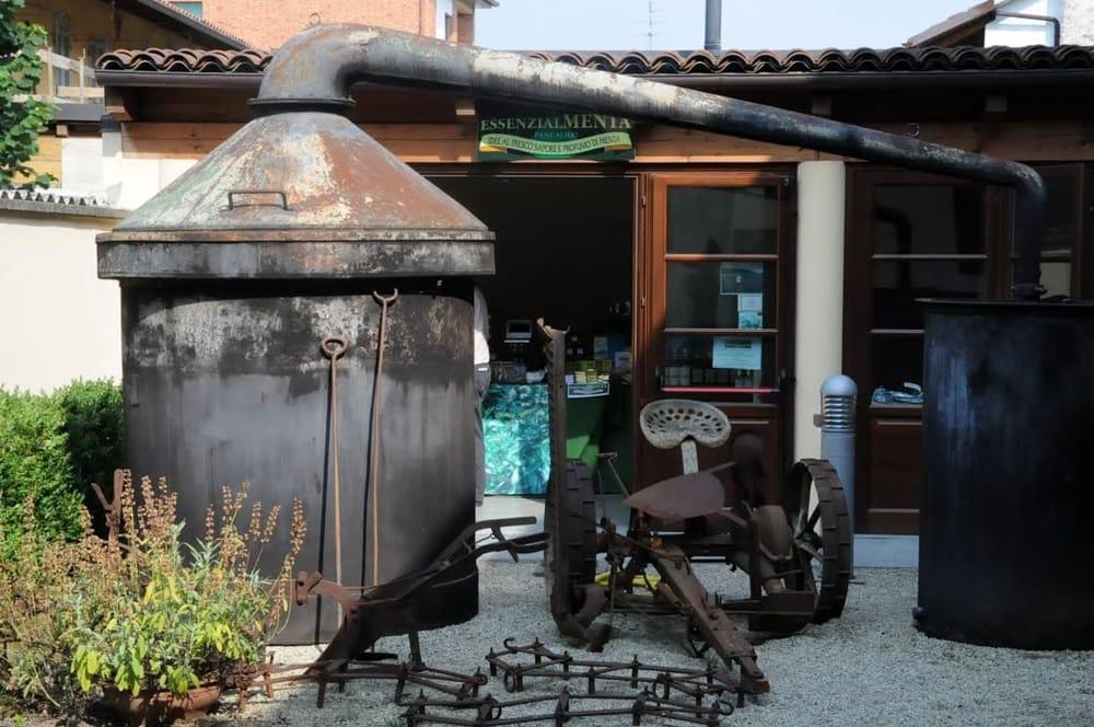 Il museo della Menta a Pancalieri